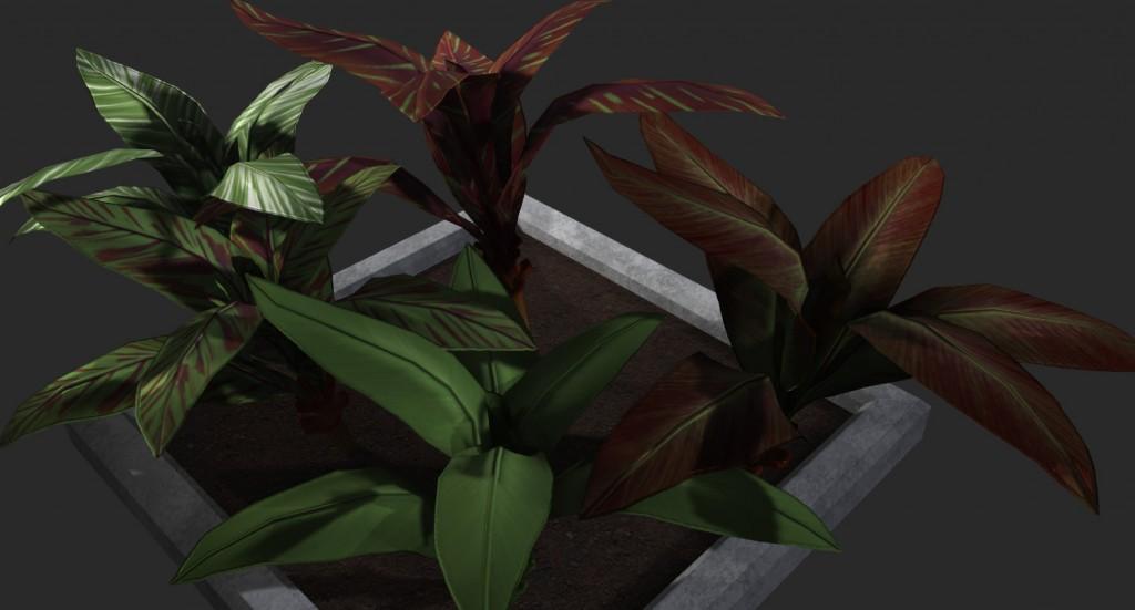 Portfolio-plants