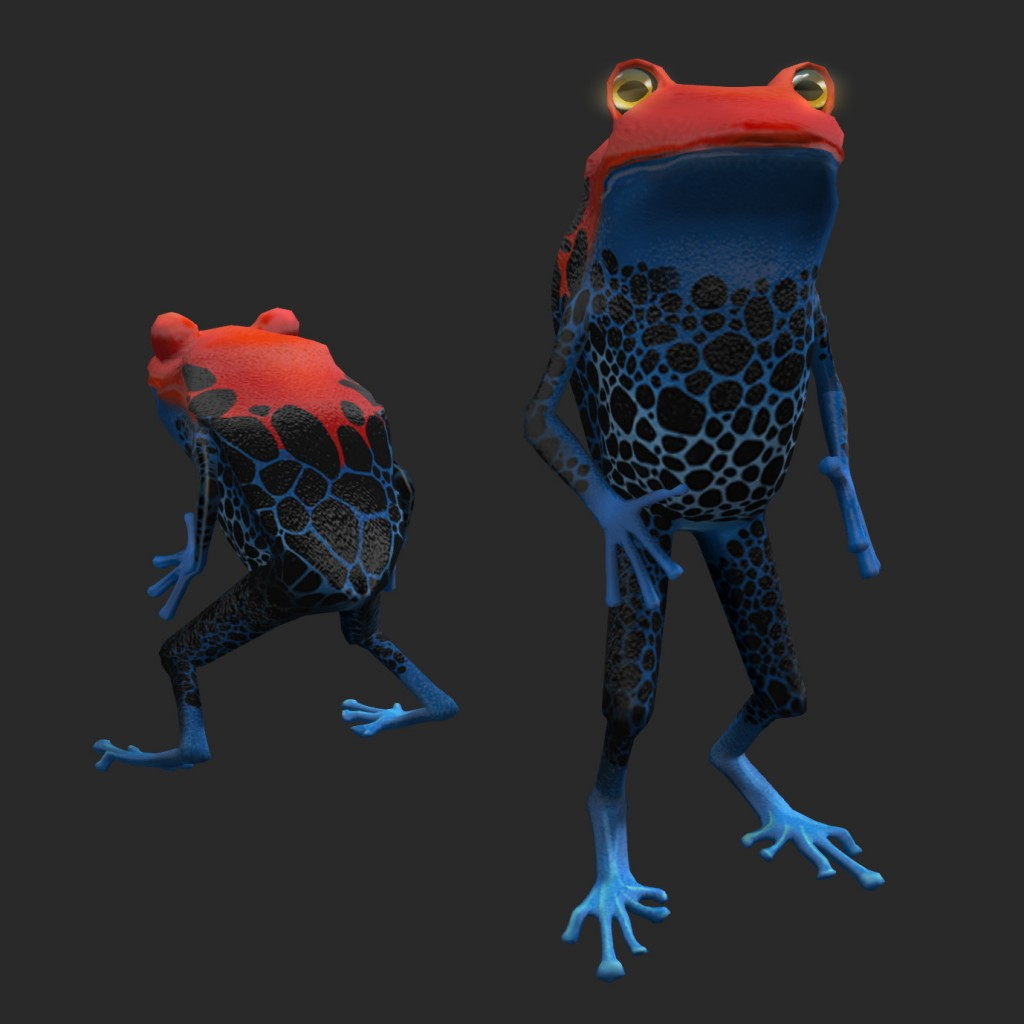 WoO-portfolio_Frog