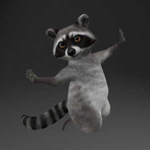 Raccoon-Portfolio-01