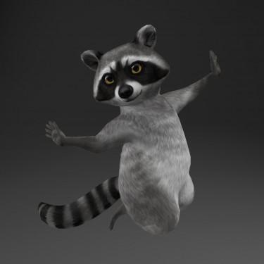 Raccoon Avatar